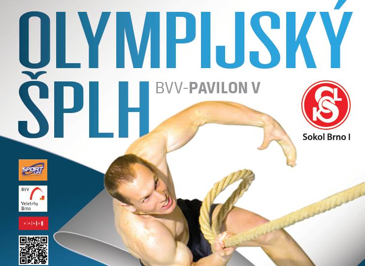VC Memoriál Ladislava Váchy 2015 - plakát - titulní - SportLife