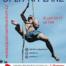 Šutr Liberec 2017 - plakát
